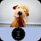 Pet food Diet (natural)