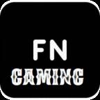 Fort N Gaming