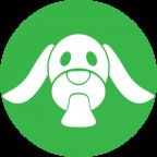Petru Dogs Rescue