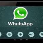 whatsapp tablets