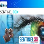Sentinel BOX